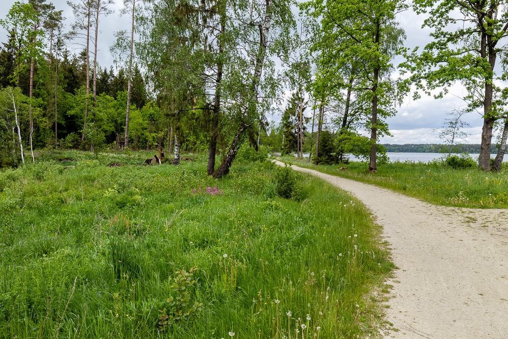 Unterwegs auf dem ca. 4 bis 5 Kilometer (je nach Wegführung) langen Šeirė Wanderweg im Nationalpark Žemaitija.
