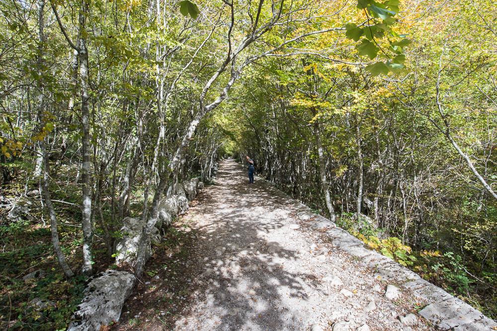 Ab und an liegt der Wanderweg im Nationalpark Paklenica auch einmal im Schatten, eine willkommene Abwechslung